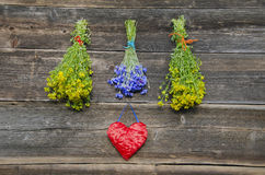 Medical herbs bunches and heart symbol on old wall. Medical herbs flowers bunches and red heart symbol on old wooden farm wall Royalty Free Stock Photography