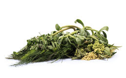Medical herbs. Herbal mediicines over white background Royalty Free Stock Photography