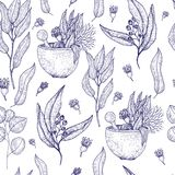 Medical herbs seamless pattern with sketch engraved spices and herbs. Plant and herbal design for wallpapers, site. Background, promotion Royalty Free Stock Photo