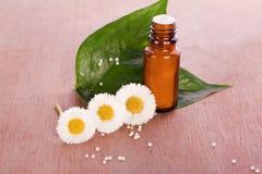Medical  homeopathic globule. Alternative medical  and homeopathic globule Royalty Free Stock Images