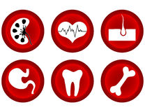 Medical icons. Medical icons set - isolated on the white Stock Photography