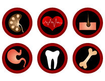 Medical icons. Medical icons set - isolated on the white Stock Photo