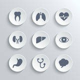 Medical icons set - vector white round buttons. With heart stethoscope pulse tooth brain stomach lungs liver kidney eye Royalty Free Stock Photography