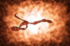 Medical illustration of the Ebola virus Stock Images