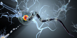 Medical illustration, nerve cells. Royalty Free Stock Images