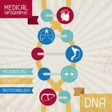 Medical infographic DNA abstract background Stock Photos