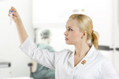 The medical lab Royalty Free Stock Image