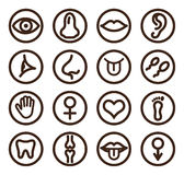 Medical line icon set for web and mobile royalty free illustration