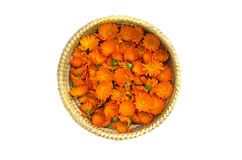 Medical Marigold flowers in wicker basket isolated on white Royalty Free Stock Photography