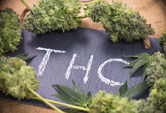 Medical marijuana background with cannabis buds & leaves framing. Medical marijuana background with cannabis leaves and buds sorrounding the word THC hand Stock Photography