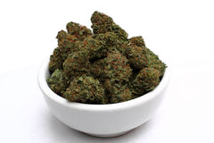 Medical marijuana bud in a white bowl Stock Image