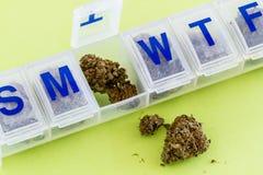Medical Marijuana Buds and Seeds Royalty Free Stock Images