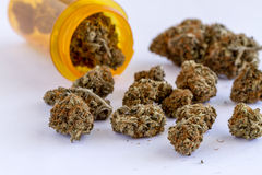 Medical Marijuana Buds and Seeds. Medical marijuana buds spilling out of prescription bottle on white table top stock photography