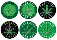 Medical marijuana cannabis design green stamps Royalty Free Stock Photo