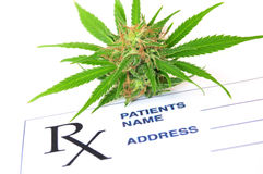 Medical marijuana and hash oil with prescription paper. Medical cannabis and hash oil with prescription paper stock photography
