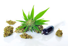 Medical marijuana and hash oil stock image
