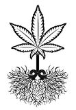 Medical marijuana leaf symbol. Medical marijuana and weed leaf symbol Stock Images