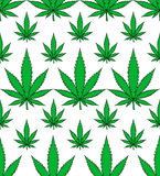 Medical marijuana leafs seamless vector pattern Royalty Free Stock Photo