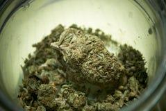 Medical Marijuana Royalty Free Stock Photos