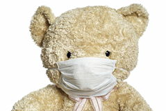 Medical mask on teddy bear. Portrait with white background royalty free stock photography