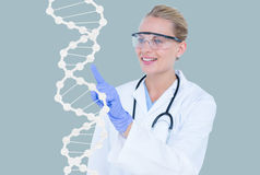 Medical models touching DNA graphics against blue background Stock Photos