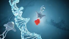 Medical nanobots repair a damaged section of DNA. 3D render.