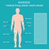 Bandage medical reticulate-tubular retainer. Vector illustration. Medical net bandage tubular elastic. Different sizes of bandages for different parts of the Royalty Free Stock Photo