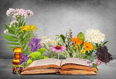 Free Medical Plants With Old Books And Glas Bottle Royalty Free Stock Photo - 141393235