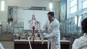 Medical professor in anatomy class with skeleton. Panning out to see students stock video
