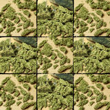 Medical & Recreational Marijuana Stock Image