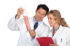 Medical Research Team Royalty Free Stock Photos