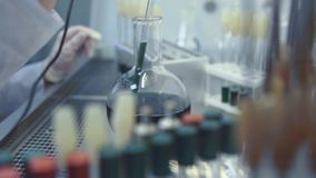 Medical Research with Test Tubes stock footage