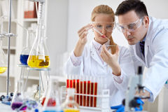 Medical researcher microbiology experiment Stock Images