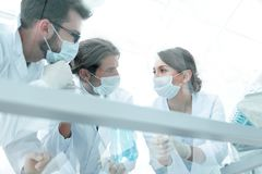 Medical researcher microbiology experiment in the laboratory. Scientists in the laboratory wearing protective goggles, looking at the flask royalty free stock photos