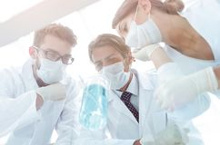 Medical researcher microbiology experiment in the laboratory. Scientists in the laboratory wearing protective goggles, looking at the flask stock photo