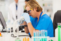 Medical researcher working Stock Images