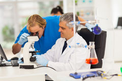 Medical researchers working. Two male medical researchers working with microscope in lab royalty free stock photo