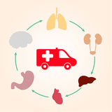 Medical scheme infographics ambulance and human organs: heart, l Stock Photography