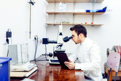 Medical scientist looking at tablet and comparing microscope results from sample experiments Stock Image