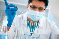 Medical scientist working in laboratory Royalty Free Stock Photography