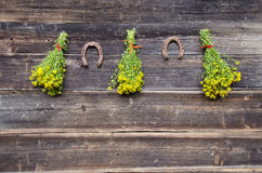 Medical St. johns wort flowers bunch and two rusty horseshoe on wall Royalty Free Stock Photo