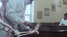 Medical student in anatomy class. Examining skeleton foot and blood vessels stock video footage