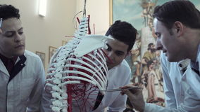 Medical student examining skeleton