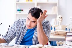 The medical student preparing for exams Stock Photography