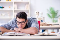 The medical student preparing for exams Royalty Free Stock Images
