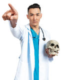 Medical student with a skull. A young serious male medical student (nurse, doctor, intern) with an artificial human skull royalty free stock photos