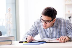 The medical student studing the skeleton. Medical student studing the skeleton Royalty Free Stock Photos