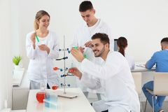 Medical students working in scientific laboratory royalty free stock photo