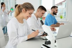 Medical students working in scientific laboratory royalty free stock image