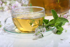 Medical tea with fragrant grasses and mint in a transparent cup Stock Photography